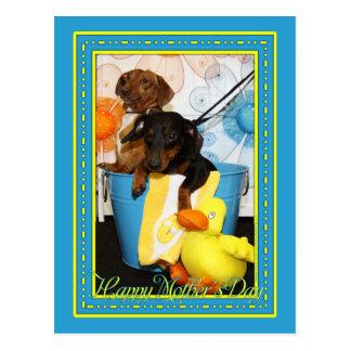 Bulldozer und staubiges - Dackel -3 Postkarte
