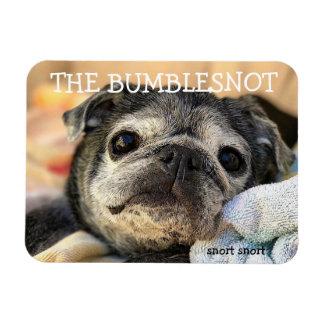 Bumblesnot Magnet: Snort Snort Magnet