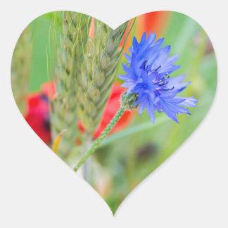 Bündel von rote Mohnblumen, Cornflowers und Ohren Herz-Aufkleber