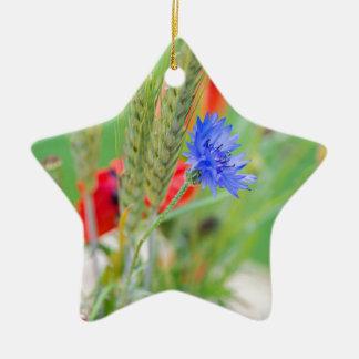 Bündel von rote Mohnblumen, Cornflowers und Ohren Keramik Stern-Ornament