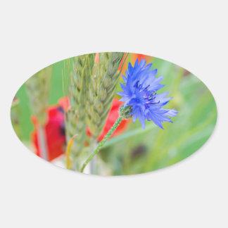Bündel von rote Mohnblumen, Cornflowers und Ohren Ovaler Aufkleber