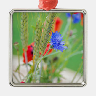Bündel von rote Mohnblumen, Cornflowers und Ohren Quadratisches Silberfarbenes Ornament