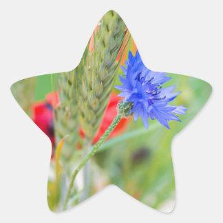 Bündel von rote Mohnblumen, Cornflowers und Ohren Stern-Aufkleber
