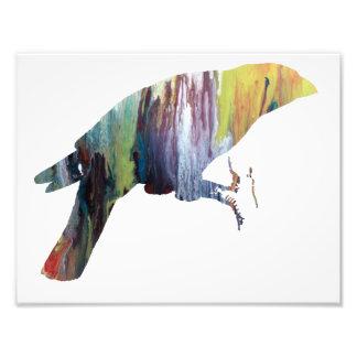 Bunte abstrakte Grossbeak Silhouette Kunstphotos