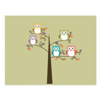 Bunte Eulen im hübschen Baum-Kalender Postkarte