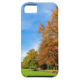 Bunte Falllandschaft mit Baumhimmel und -wiese iPhone 5 Schutzhülle