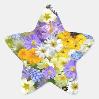 Bunte Frühlings-Blumenzusammensetzung Stern-Aufkleber