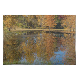 Bunte Herbst-Teich-Reflexionen Tischset
