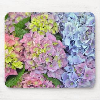 Bunte Hydrangea-Blumen Mousepad