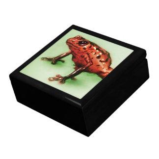 Bunte illustrierte Fliesen-Geschenkboxen - Frosch Schmuckschachtel