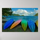 Bunte Kanus auf dem Strand in Pago Pago Poster