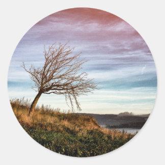 Bunte Landschaft und gekrümmtes Baum-Foto Runder Aufkleber