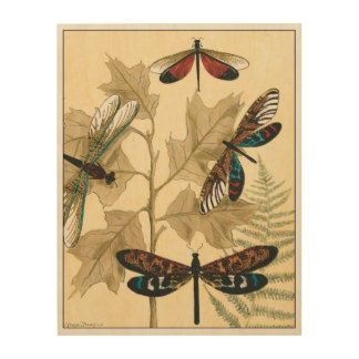 Bunte Libellen, die über Blätter schwimmen Holzwanddeko