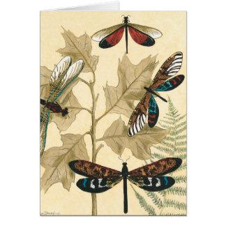 Bunte Libellen, die über Blätter schwimmen Karte