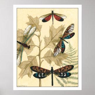 Bunte Libellen, die über Blätter schwimmen Poster