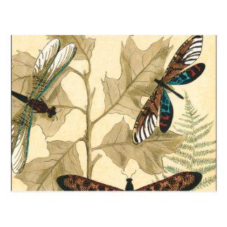 Bunte Libellen, die über Blätter schwimmen Postkarte