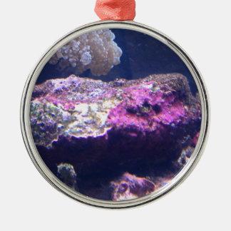 Bunte Livefelsen Silbernes Ornament