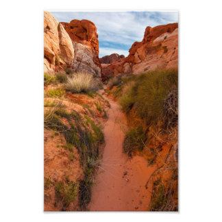 Bunte Mojave-Wüsten-Wäsche - Tal des Feuers Fotodruck