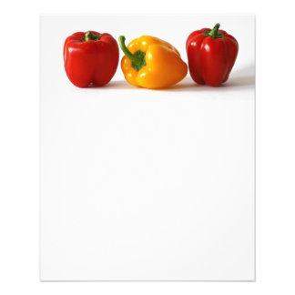 bunte Nahrung des Gemüses des Paprikas Flyers