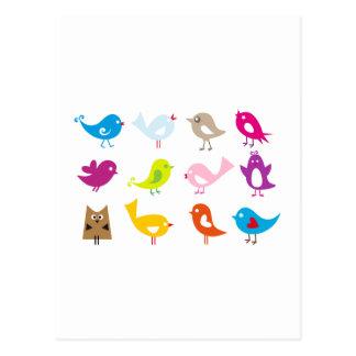 Bunte niedliche Vögel Postkarte