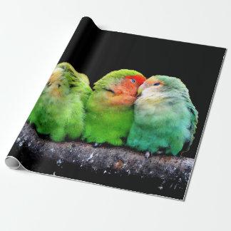 Bunte Papageien Geschenkpapier