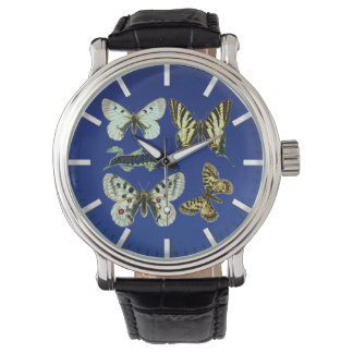Bunte Schmetterlinge, Motten und Raupen Uhr