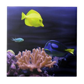 Bunte tropische Fische Keramikfliese