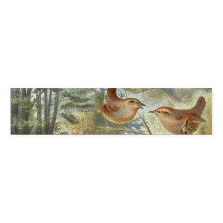 Bunte Vintage Illustration der Vögel Serviettenband