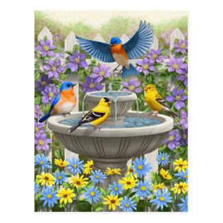 Bunte Vögel und Vogel-Bad-Blumen-Garten Postkarte