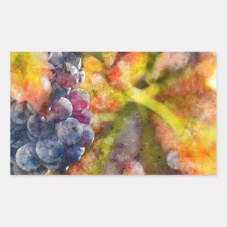 Bunte Weintrauben auf der Rebe Rechteckiger Aufkleber