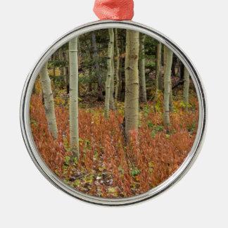 Bunter Aspen-Waldboden Silbernes Ornament