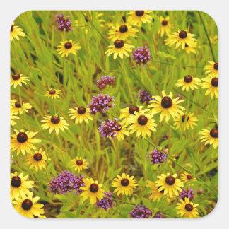Bunter Echinacea-Blumen-Gartendruck Quadrat-Aufkleber