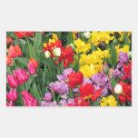 Bunter Frühlings-Blumengarten Rechtecksticker
