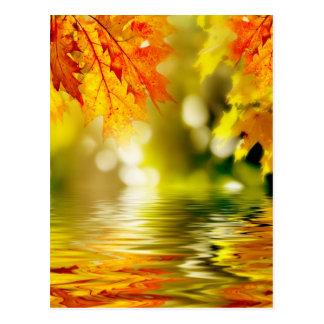Bunter Herbst verlässt das Reflektieren im Wasser Postkarte