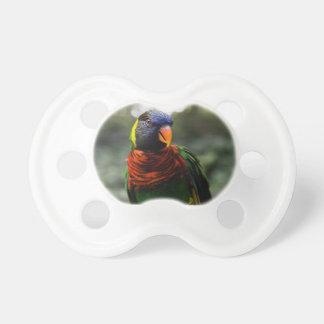 Bunter Parakeet-Tassen-Schuss Baby Schnuller