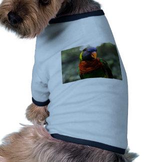 Bunter Parakeet-Tassen-Schuss Haustierhemden