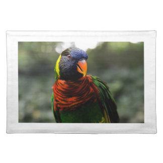 Bunter Parakeet-Tassen-Schuss Tischset