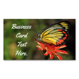 Bunter Schmetterling Magnetische Visitenkarten