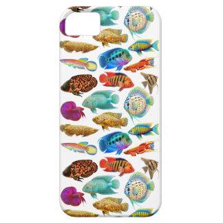 Bunter tropischer Aquarium-Fische iPhone Kasten iPhone 5 Etuis