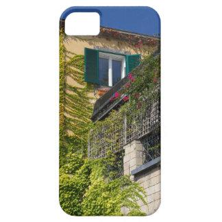 Buntes Blätter auf Haus Etui Fürs iPhone 5
