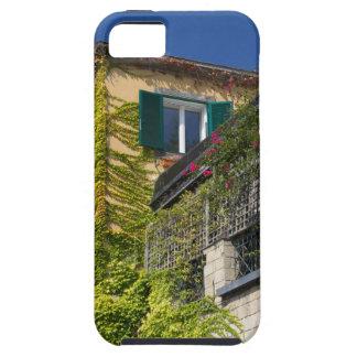 Buntes Blätter auf Haus iPhone 5 Schutzhülle