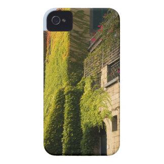 Buntes Blätter auf Hauswänden Case-Mate iPhone 4 Hülle