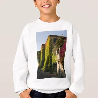 Buntes Blätter auf Hauswänden Sweatshirt