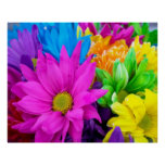 Buntes Blumen-Plakat