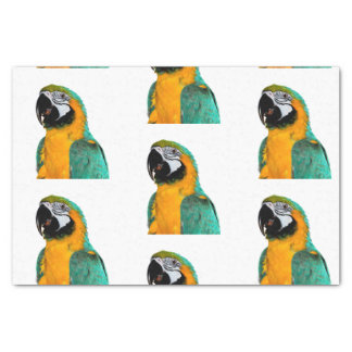 buntes Goldaquamarines Macawpapageien-Vogelporträt Seidenpapier