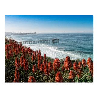 Buntes La Jolla, Kalifornien, USA Postkarte