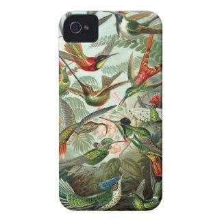 Buntes Muster der Vintagen Kunst der Summenvögel, Case-Mate iPhone 4 Hüllen