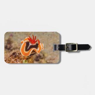 Buntes Nudibranch des Korallenmeers Kofferanhänger