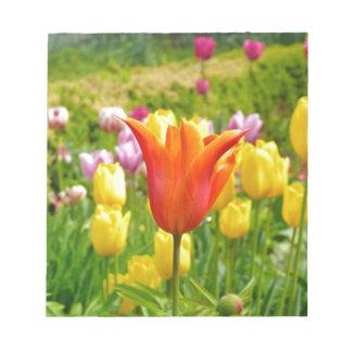 Buntes Tulips_321_B_R2 Notizblock