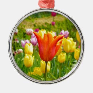 Buntes Tulips_321_B_R2 Rundes Silberfarbenes Ornament